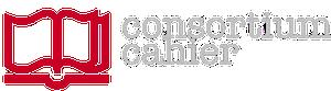 logo Consortium CAHIER de la TGIR Huma-Num